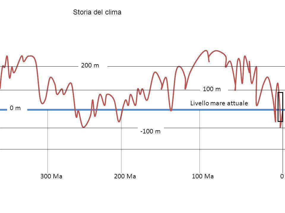 Livello mare attuale 300 Ma100 Ma200 Ma 200 m 100 m -100 m 0 0 m Storia del clima