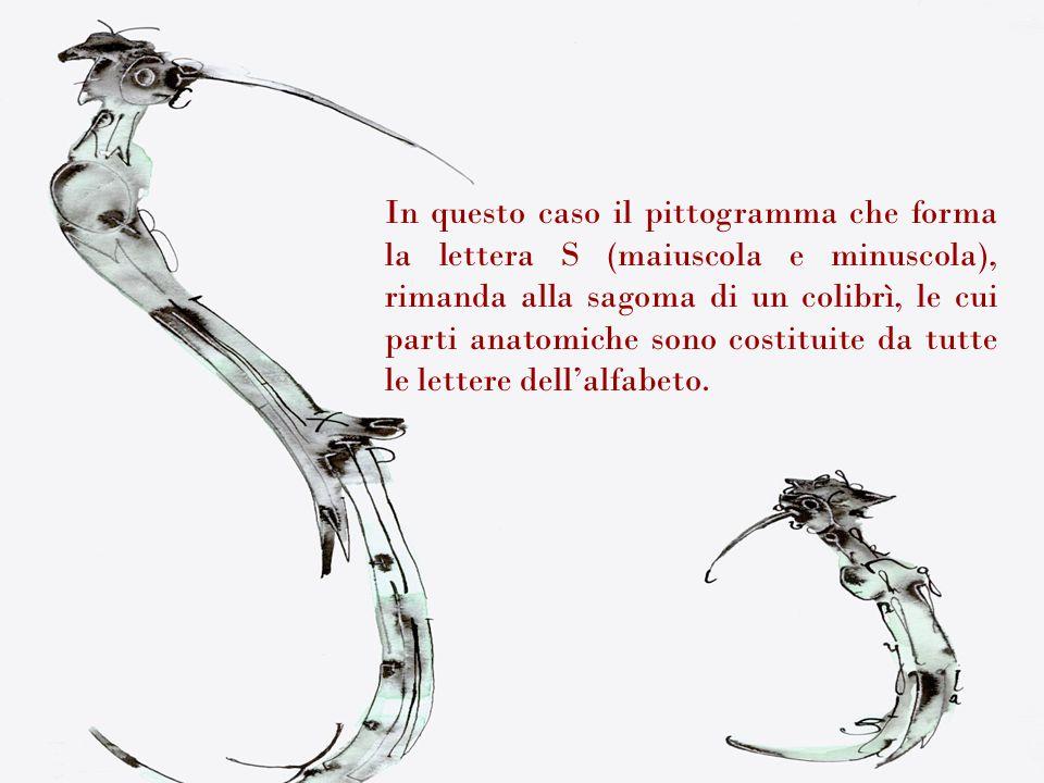 In questo caso il pittogramma che forma la lettera S (maiuscola e minuscola), rimanda alla sagoma di un colibrì, le cui parti anatomiche sono costitui