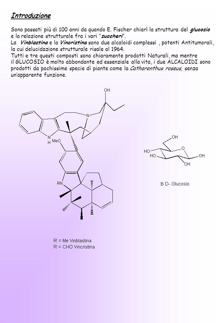 Queste due strutture molecolari così diverse sono invece legate da una complessa via metabolica