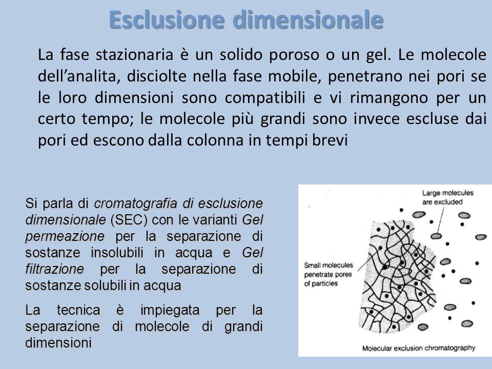 Esclusione dimensionale La fase stazionaria è un solido poroso o un gel. Le molecole dell'analita, disciolte nella fase mobile, penetrano nei pori se