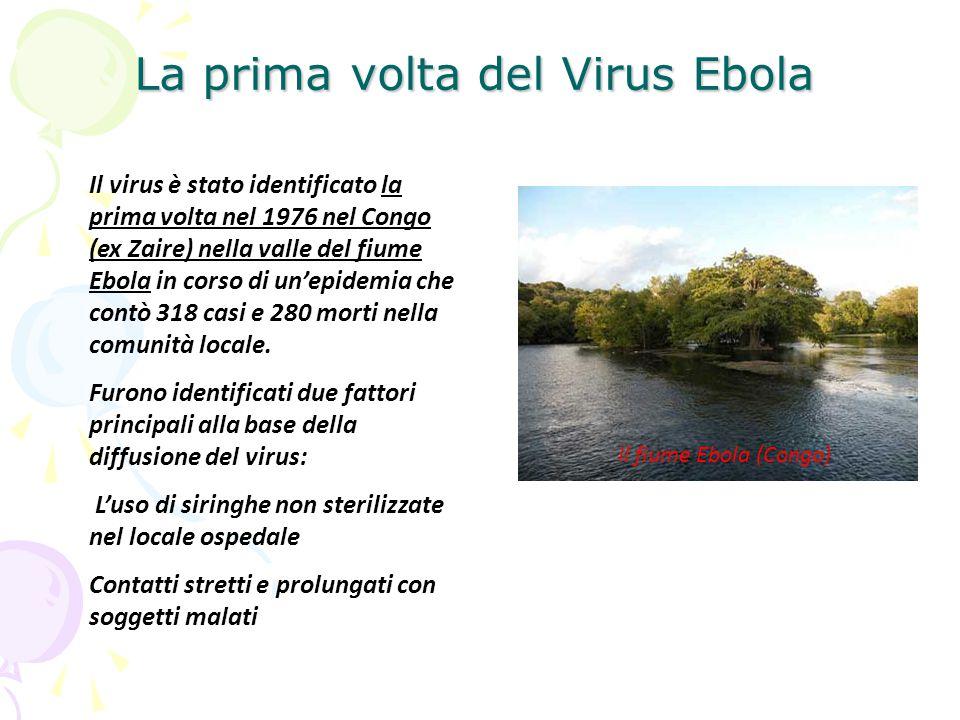 La prima volta del Virus Ebola Il virus è stato identificato la prima volta nel 1976 nel Congo (ex Zaire) nella valle del fiume Ebola in corso di un'e