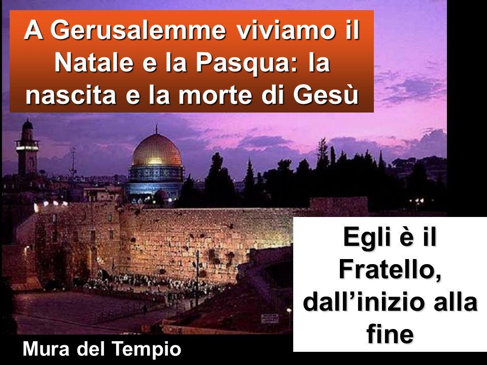 A Gerusalemme viviamo il Natale e la Pasqua: la nascita e la morte di Gesù Egli è il Fratello, dall'inizio alla fine Mura del Tempio