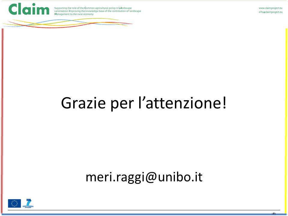 18 Grazie per l'attenzione! meri.raggi@unibo.it