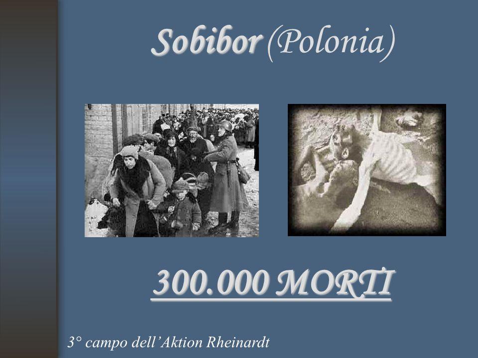 Sobibor Sobibor (Polonia) 300.000 MORTI 3° campo dell'Aktion Rheinardt