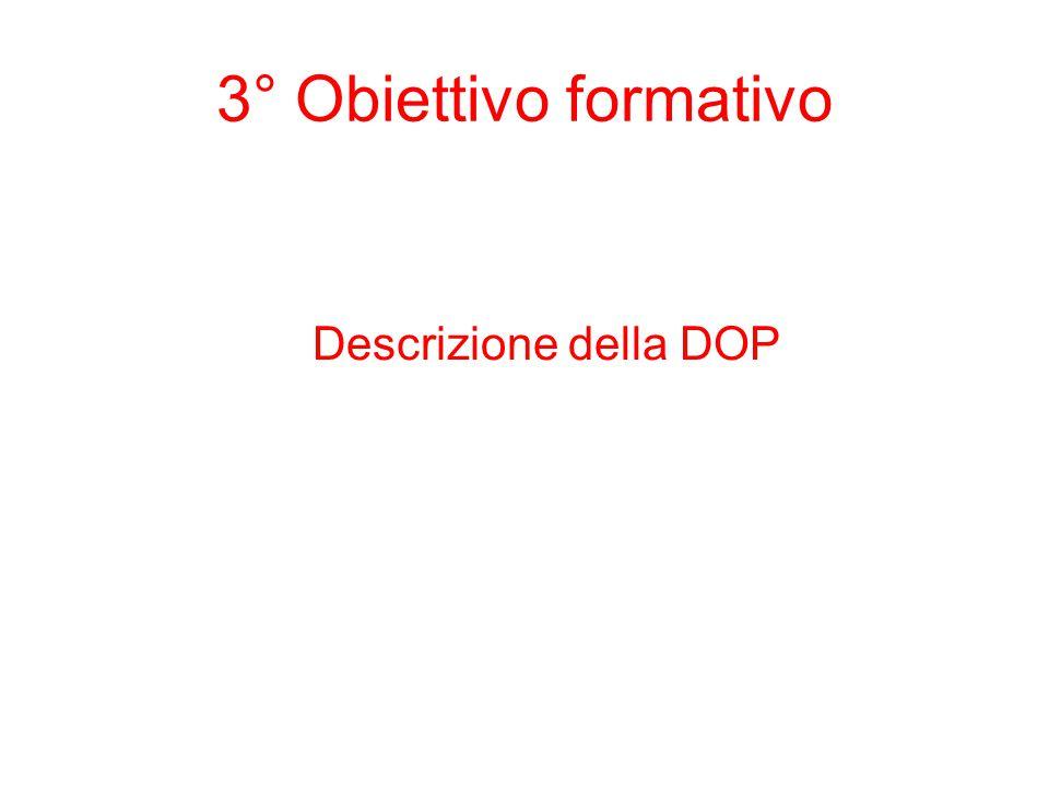Descrizione della DOP 3° Obiettivo formativo