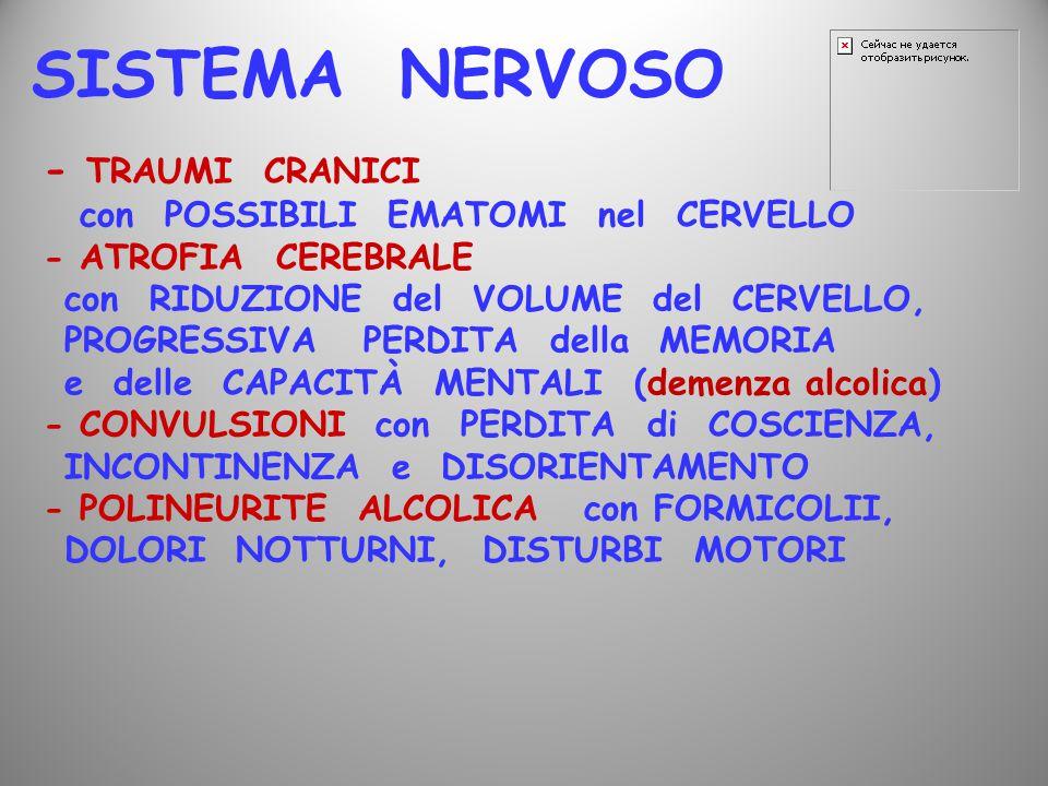 SISTEMA NERVOSO - TRAUMI CRANICI con POSSIBILI EMATOMI nel CERVELLO - ATROFIA CEREBRALE con RIDUZIONE del VOLUME del CERVELLO, PROGRESSIVA PERDITA del