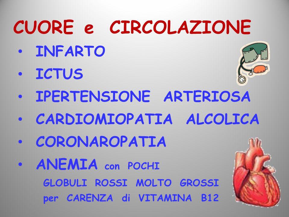 CUORE e CIRCOLAZIONE INFARTO ICTUS IPERTENSIONE ARTERIOSA CARDIOMIOPATIA ALCOLICA CORONAROPATIA ANEMIA con POCHI GLOBULI ROSSI MOLTO GROSSI per CARENZ