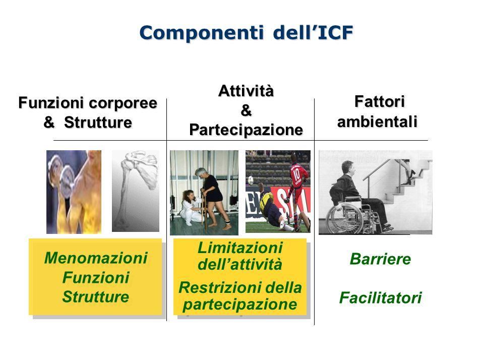 Componenti dell'ICF Funzioni corporee & Strutture Attività & Partecipazione Fattori ambientali Fattori ambientali Barriere Facilitatori Menomazioni Fu