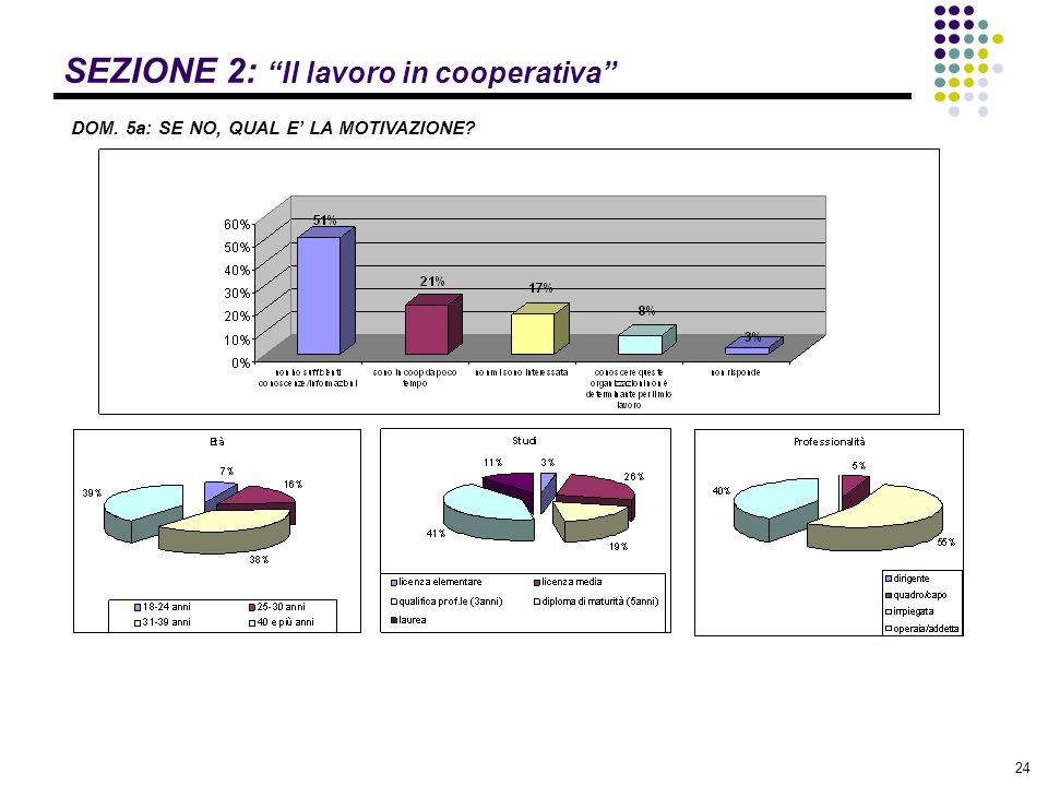 """24 SEZIONE 2: """"Il lavoro in cooperativa"""" DOM. 5a: SE NO, QUAL E' LA MOTIVAZIONE?"""