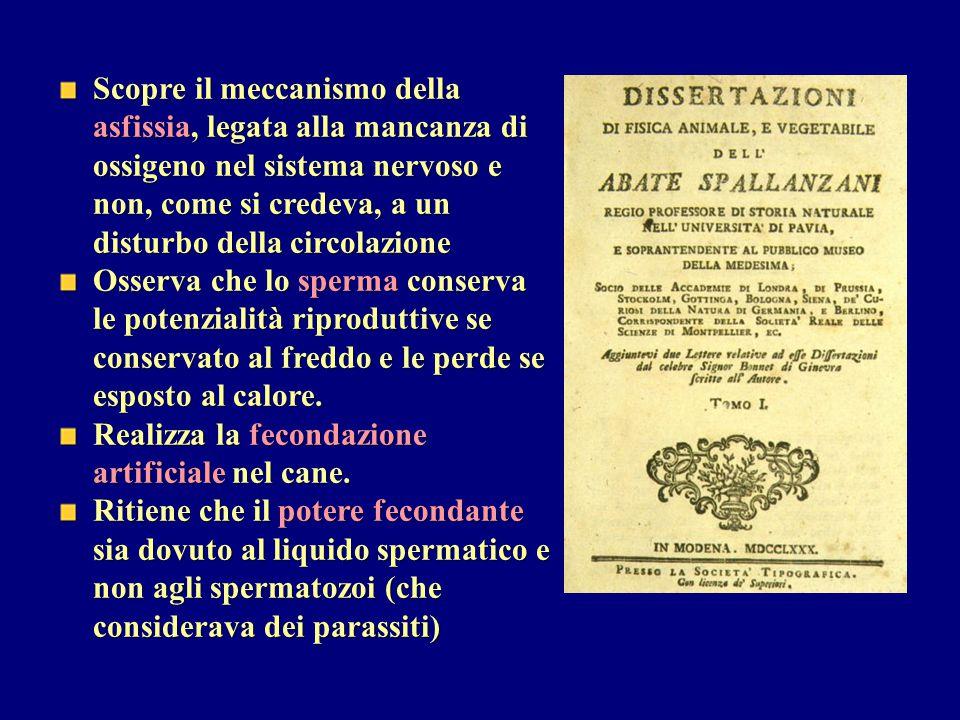 Studia a Bologna sotto l autorità di Valsalva e insegna a Padova.