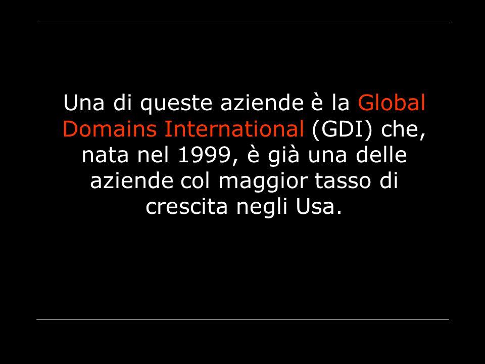 Una di queste aziende è la Global Domains International (GDI) che, nata nel 1999, è già una delle aziende col maggior tasso di crescita negli Usa.
