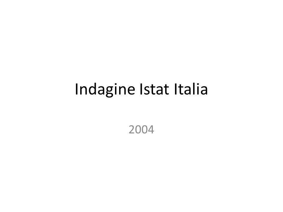 Indagine Istat Italia 2004