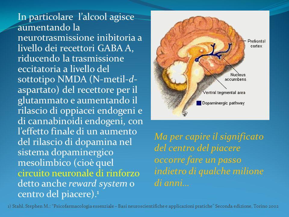 In particolare l'alcool agisce aumentando la neurotrasmissione inibitoria a livello dei recettori GABA A, riducendo la trasmissione eccitatoria a live