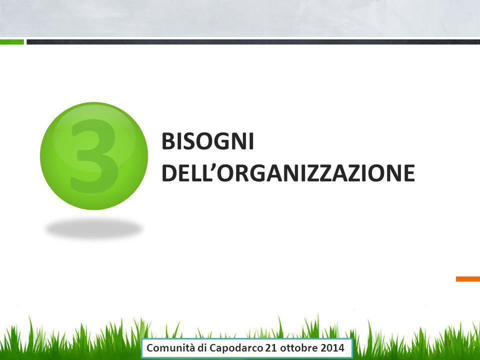 3 BISOGNI DELL'ORGANIZZAZIONE 37 Comunità di Capodarco 21 ottobre 2014