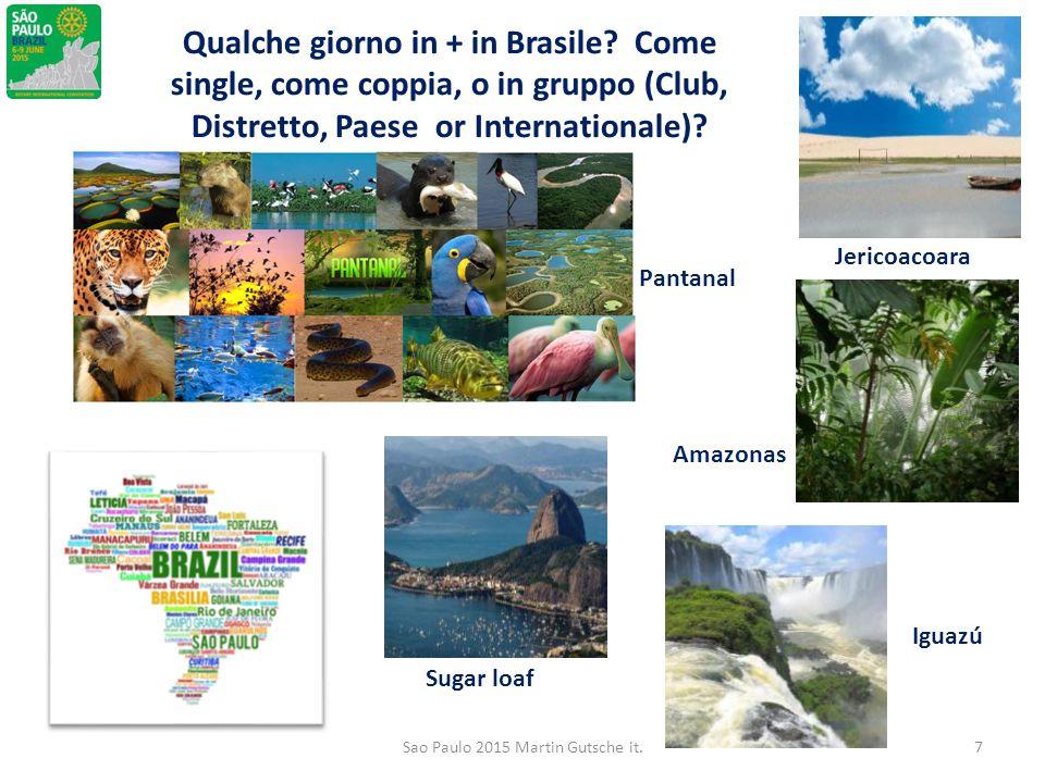 Qualche giorno in + in Brasile? Come single, come coppia, o in gruppo (Club, Distretto, Paese or Internationale)? Pantanal Sugar loaf Iguazú Amazonas