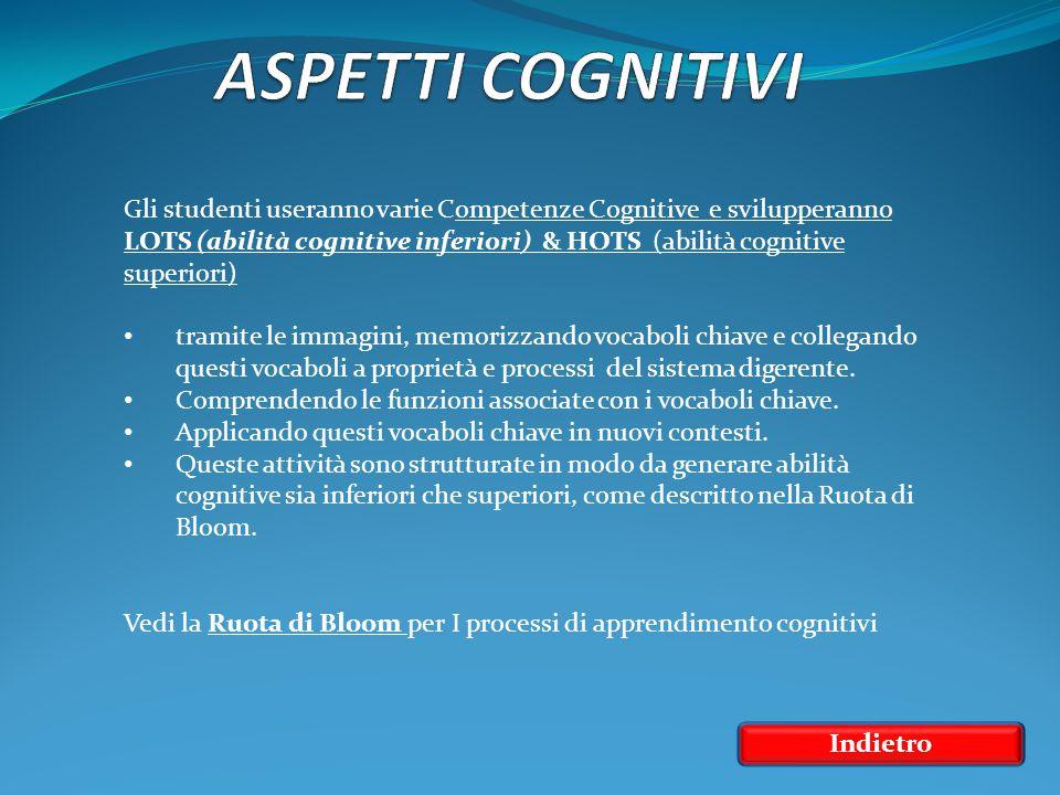 Indietro Gli studenti useranno varie Competenze Cognitive e svilupperanno LOTS (abilità cognitive inferiori) & HOTS (abilità cognitive superiori) LOTS