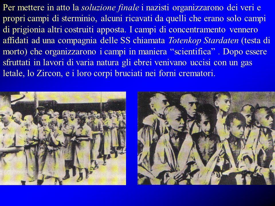 Per mettere in atto la soluzione finale i nazisti organizzarono dei veri e propri campi di sterminio, alcuni ricavati da quelli che erano solo campi d