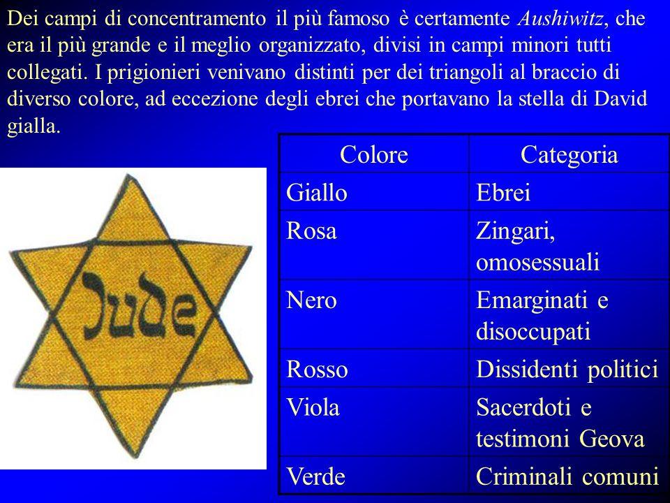 Dei campi di concentramento il più famoso è certamente Aushiwitz, che era il più grande e il meglio organizzato, divisi in campi minori tutti collegat