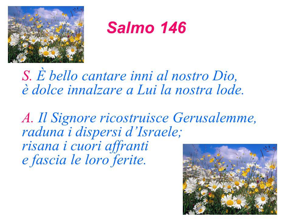 Salmo 146 S. È bello cantare inni al nostro Dio, è dolce innalzare a Lui la nostra lode. A. Il Signore ricostruisce Gerusalemme, raduna i dispersi d'I