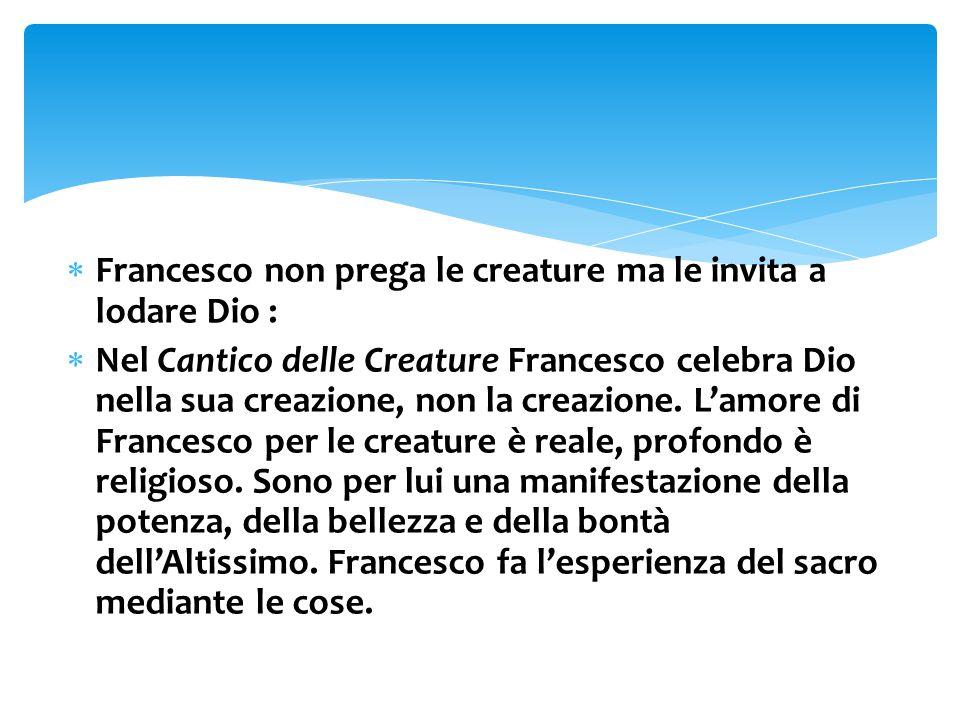 Francesco non prega le creature ma le invita a lodare Dio :  Nel Cantico delle Creature Francesco celebra Dio nella sua creazione, non la creazione.
