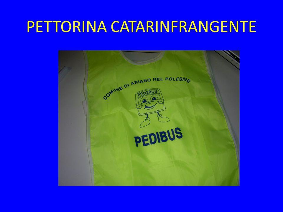 PETTORINA CATARINFRANGENTE