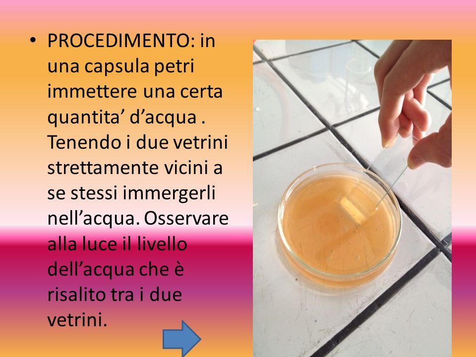 PROCEDIMENTO: in una capsula petri immettere una certa quantita' d'acqua. Tenendo i due vetrini strettamente vicini a se stessi immergerli nell'acqua.