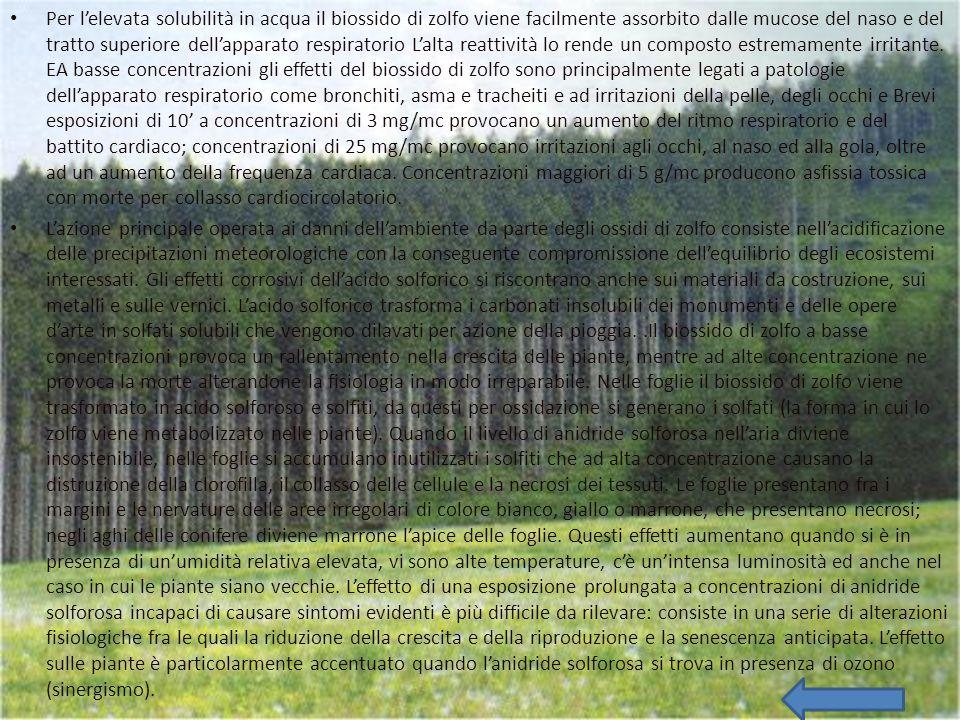L'ANIDRIDE SOLFOROSA L'anidride solforosa o biossido di zolfo è un gas incolore, irritante, non infiammabile, molto solubile in acqua e dall'odore pun