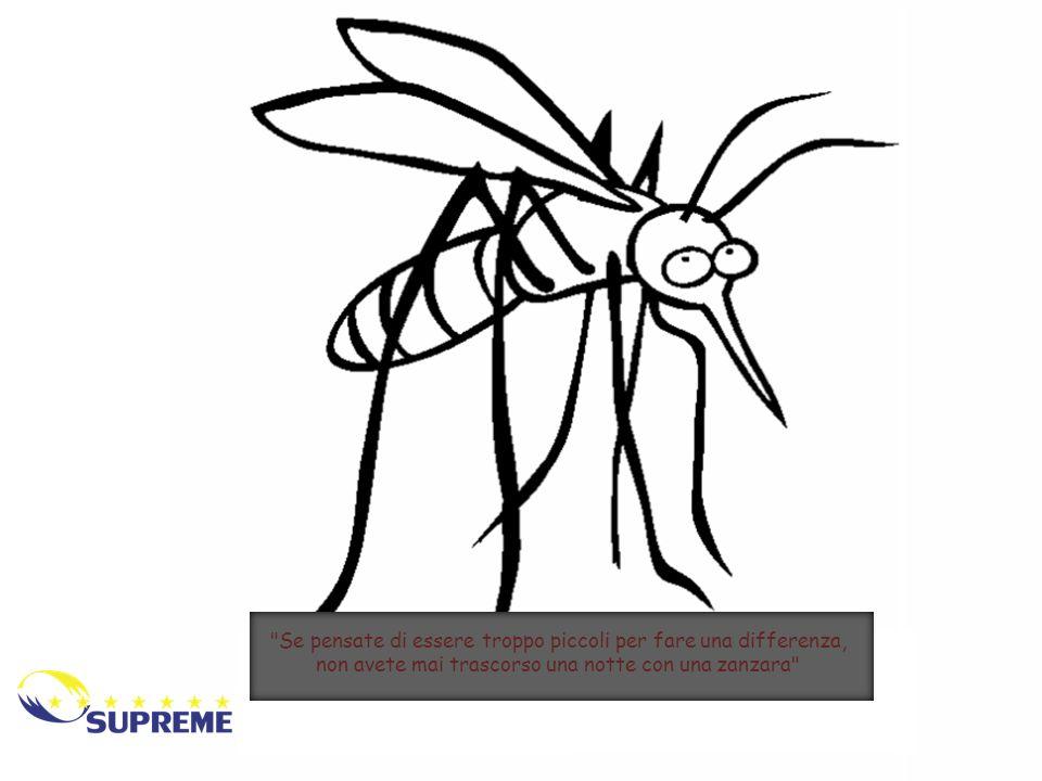 Se pensate di essere troppo piccoli per fare una differenza, non avete mai trascorso una notte con una zanzara