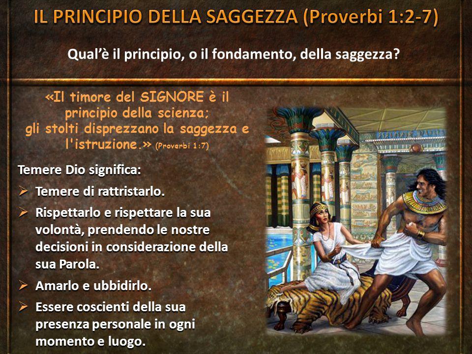 Qual'è il principio, o il fondamento, della saggezza? «Il timore del SIGNORE è il principio della scienza; gli stolti disprezzano la saggezza e l'istr