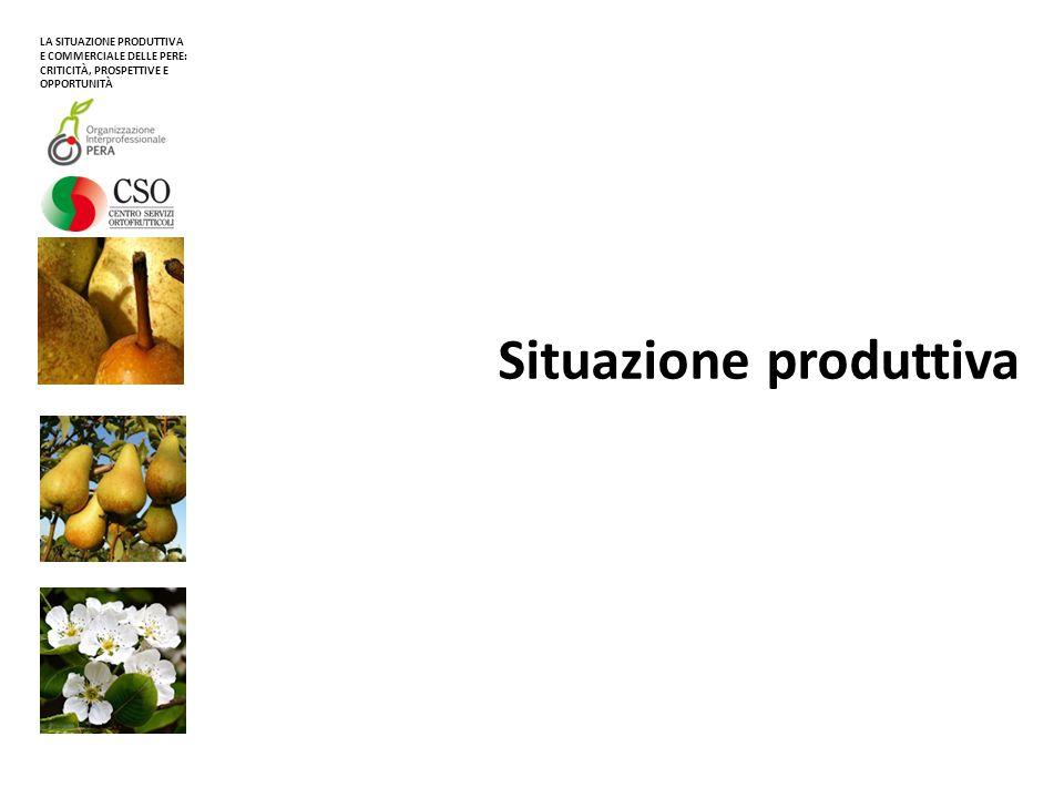 Situazione produttiva La produzione mondiale di pere recentemente si pone sui 23,2 milioni di tonnellate (media 2009/2012) Fonte: elaborazioni CSO su dati FAO EMISFERO NORD circa 21,7 milioni di tonnellate (media 2009/2012) EMISFERO SUD circa 1,5 milioni di tonnellate (media 2009/2012) LA SITUAZIONE PRODUTTIVA E COMMERCIALE DELLE PERE: CRITICITÀ, PROSPETTIVE E OPPORTUNITÀ