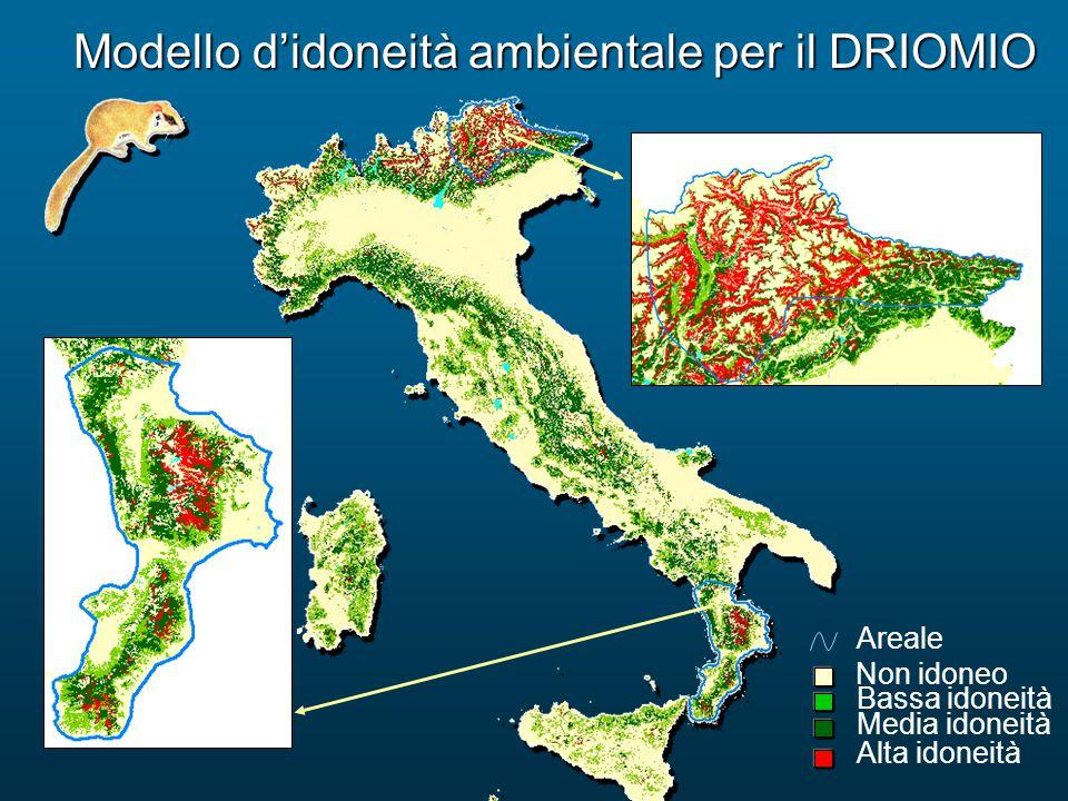 Modello d'idoneità ambientale per il DRIOMIO Bassa idoneità Alta idoneità Media idoneità Non idoneo Areale