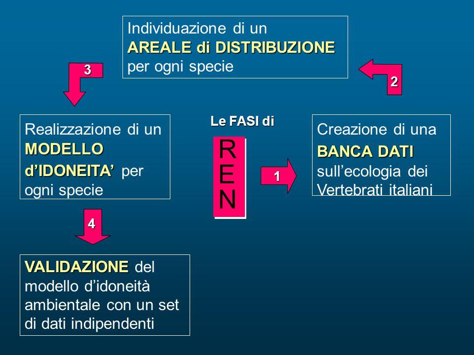BANCA DATI Creazione di una BANCA DATI sull'ecologia dei Vertebrati italiani MODELLO d'IDONEITA' Realizzazione di un MODELLO d'IDONEITA' per ogni spec