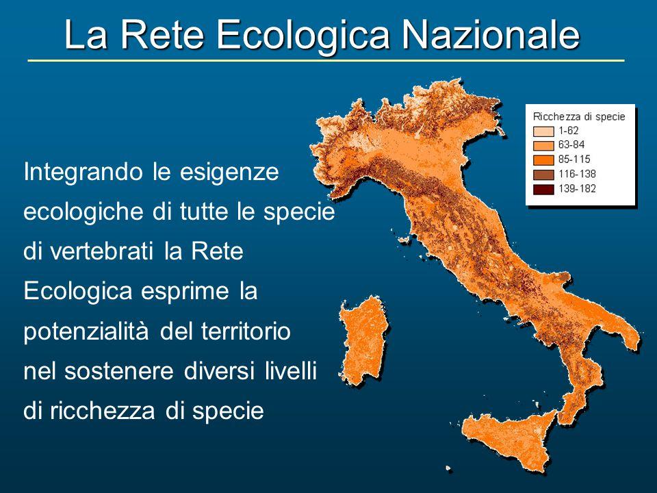 La Rete Ecologica Nazionale Integrando le esigenze ecologiche di tutte le specie di vertebrati la Rete Ecologica esprime la potenzialità del territori