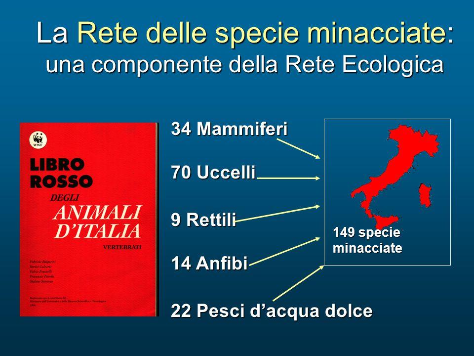 34 Mammiferi 70 Uccelli 14 Anfibi 9 Rettili 22 Pesci d'acqua dolce La Rete delle specie minacciate: una componente della Rete Ecologica 149 specie min