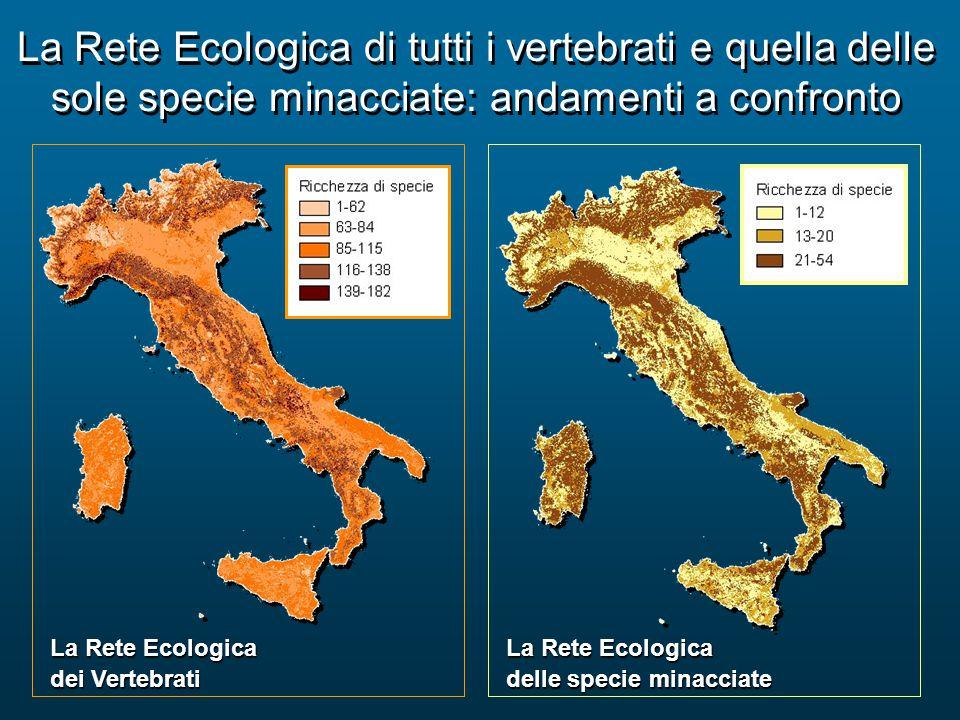 La Rete Ecologica di tutti i vertebrati e quella delle sole specie minacciate: andamenti a confronto La Rete Ecologica dei Vertebrati La Rete Ecologic