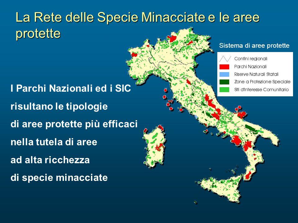 La Rete delle Specie Minacciate e le aree protette I Parchi Nazionali ed i SIC risultano le tipologie di aree protette più efficaci nella tutela di ar