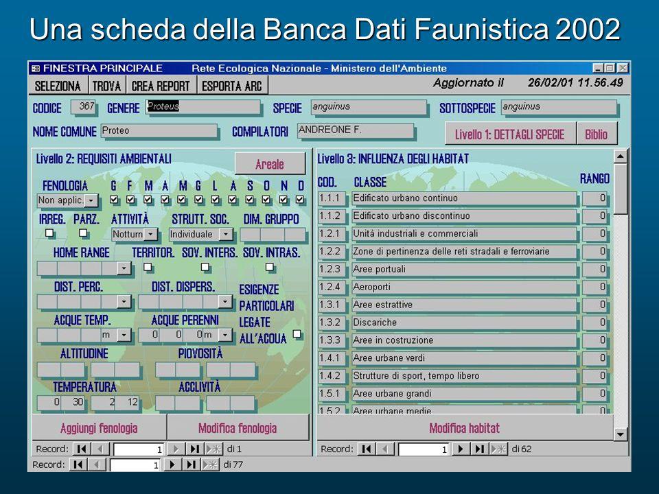 Una scheda della Banca Dati Faunistica 2002