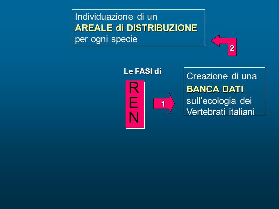BANCA DATI Creazione di una BANCA DATI sull'ecologia dei Vertebrati italiani Individuazione di un AREALE di DISTRIBUZIONE per ogni specie Le FASI di 1