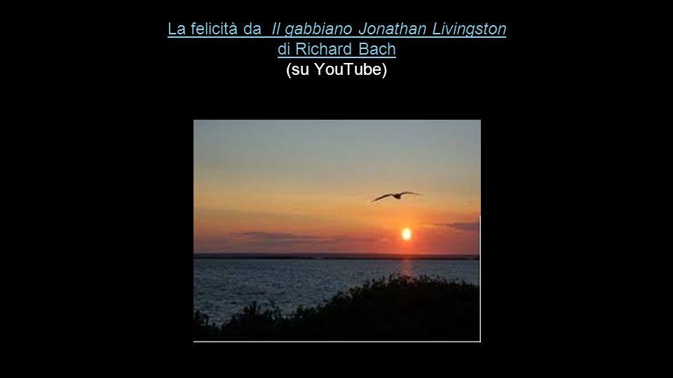 La felicità da Il gabbiano Jonathan Livingston di Richard Bach La felicità da Il gabbiano Jonathan Livingston di Richard Bach (su YouTube) La felicità da Il gabbiano Jonathan Livingston di Richard Bach