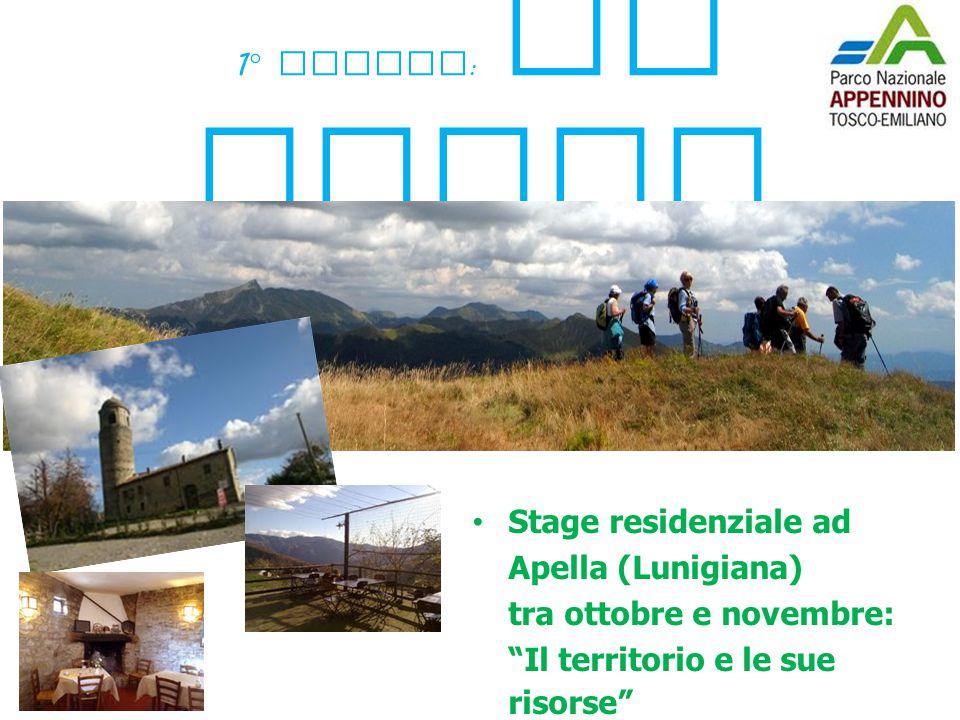 """1 ° modulo : Il Parco Stage residenziale ad Apella (Lunigiana) tra ottobre e novembre: """"Il territorio e le sue risorse"""""""