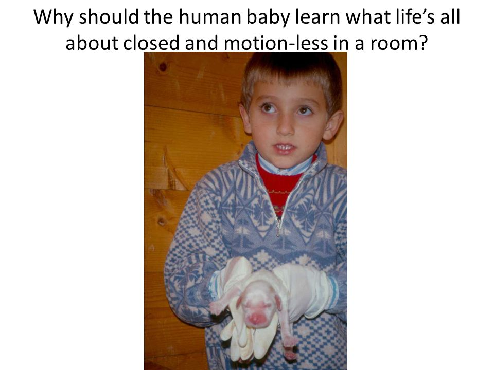 Why should the human baby learn what life's all about closed and motion-less in a room?