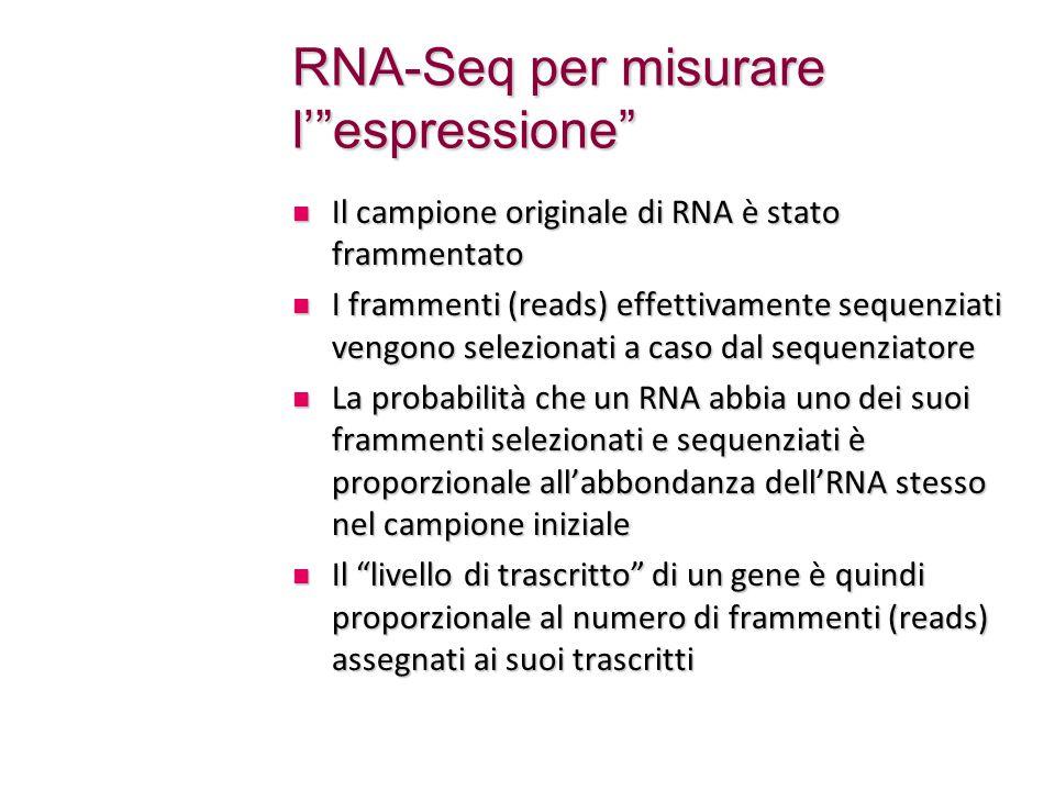 RNA-Seq per misurare l' espressione Il campione originale di RNA è stato frammentato Il campione originale di RNA è stato frammentato I frammenti (reads) effettivamente sequenziati vengono selezionati a caso dal sequenziatore I frammenti (reads) effettivamente sequenziati vengono selezionati a caso dal sequenziatore La probabilità che un RNA abbia uno dei suoi frammenti selezionati e sequenziati è proporzionale all'abbondanza dell'RNA stesso nel campione iniziale La probabilità che un RNA abbia uno dei suoi frammenti selezionati e sequenziati è proporzionale all'abbondanza dell'RNA stesso nel campione iniziale Il livello di trascritto di un gene è quindi proporzionale al numero di frammenti (reads) assegnati ai suoi trascritti Il livello di trascritto di un gene è quindi proporzionale al numero di frammenti (reads) assegnati ai suoi trascritti