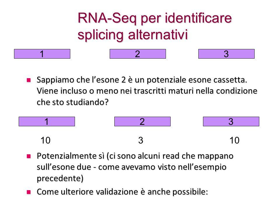 RNA-Seq per identificare splicing alternativi Sappiamo che l'esone 2 è un potenziale esone cassetta. Viene incluso o meno nei trascritti maturi nella