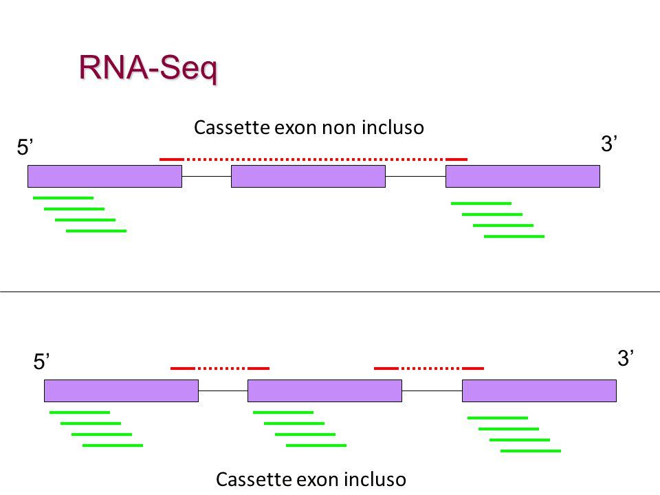 RNA-Seq 5' 3' Cassette exon non incluso 5' 3' Cassette exon incluso