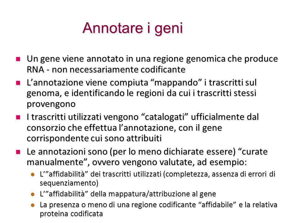 Annotare i geni Un gene viene annotato in una regione genomica che produce RNA - non necessariamente codificante Un gene viene annotato in una regione