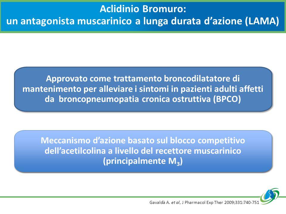 Aclidinio Bromuro: un antagonista muscarinico a lunga durata d'azione (LAMA) Gavaldà A. et al, J Pharmacol Exp Ther 2009;331:740-751
