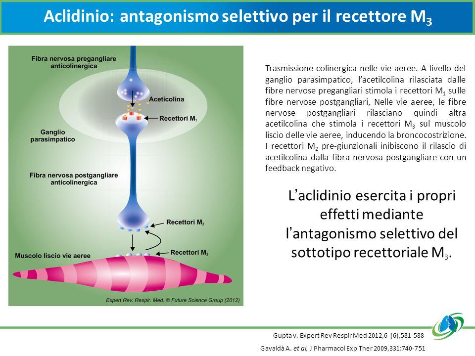 L'aclidinio esercita i propri effetti mediante l'antagonismo selettivo del sottotipo recettoriale M 3.
