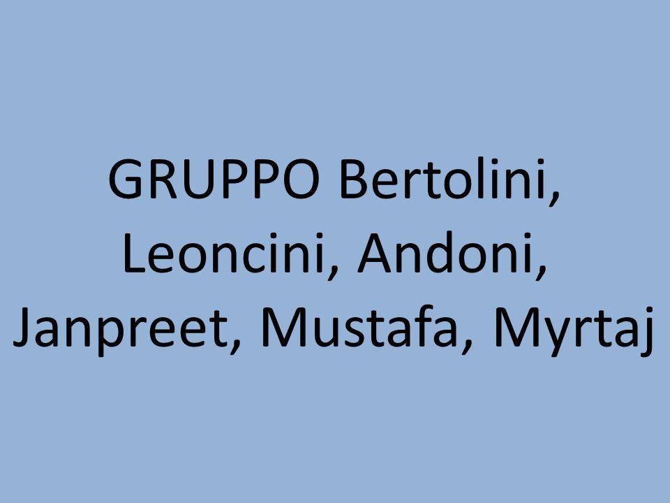 GRUPPO Bertolini, Leoncini, Andoni, Janpreet, Mustafa, Myrtaj