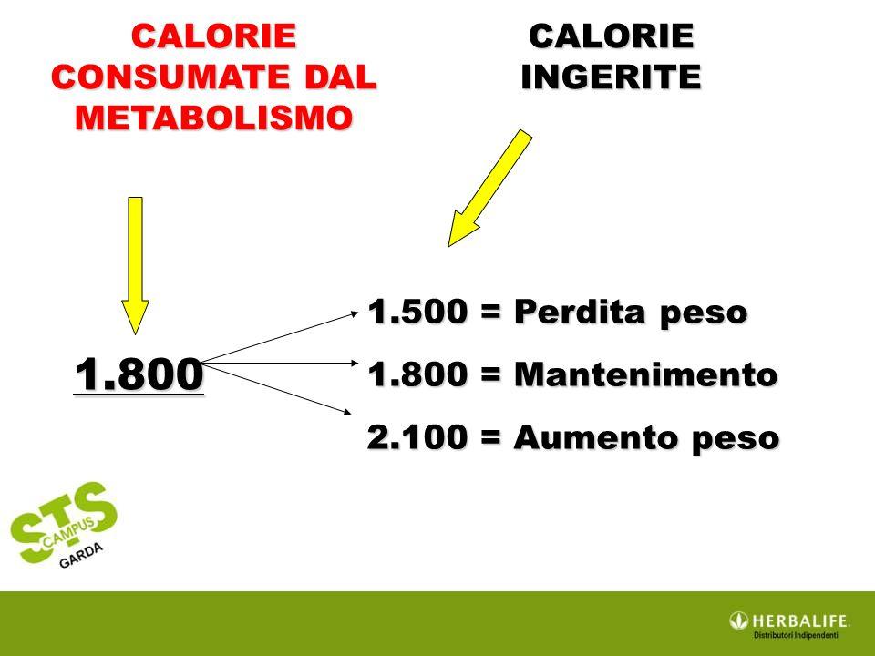 CALORIE CONSUMATE DAL METABOLISMO CALORIE INGERITE 1.800 1.500 = Perdita peso 1.800 = Mantenimento 2.100 = Aumento peso