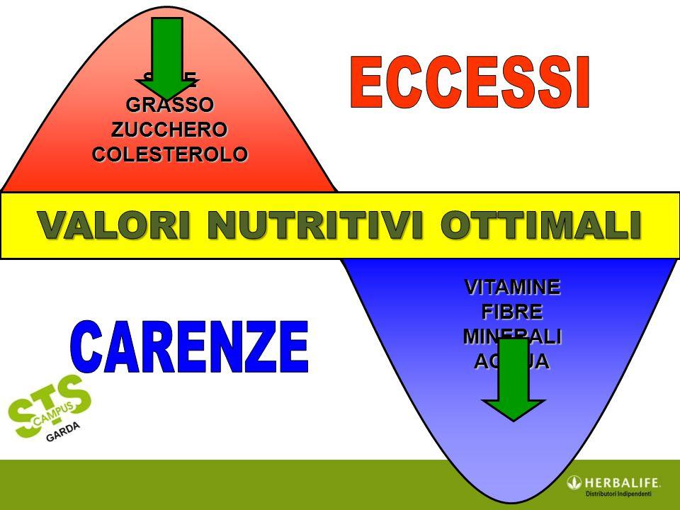 SALE GRASSO ZUCCHERO COLESTEROLO VITAMINE FIBRE MINERALI ACQUA